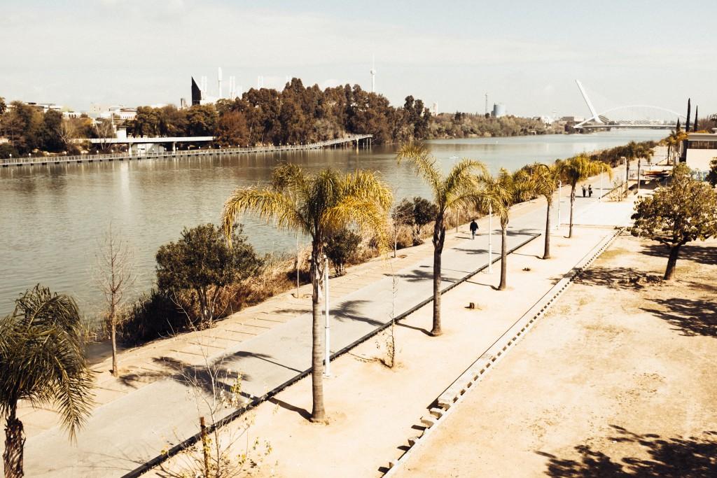 TL Sevilla März16 (9 von 34)